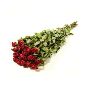 Αποξηραμένα κόκκινα τριαντάφυλλα