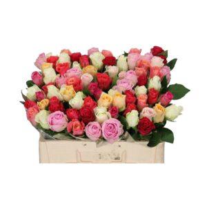 Πολύχρωμα τριαντάφυλλα